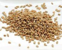Buy Sensible Seed Mix online