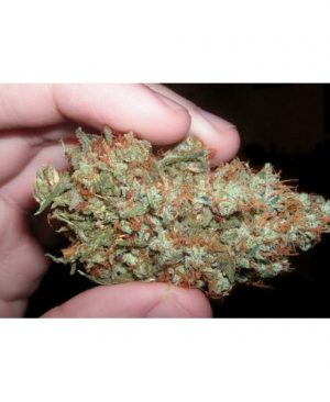 California Trainwreck from