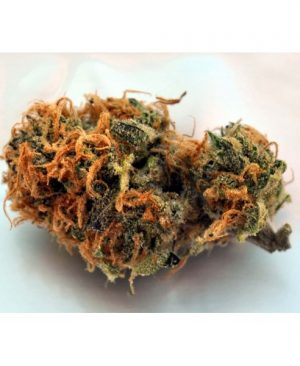Buy Querkle Kush